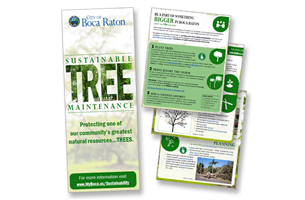 City of Boca Raton Tree Brochure