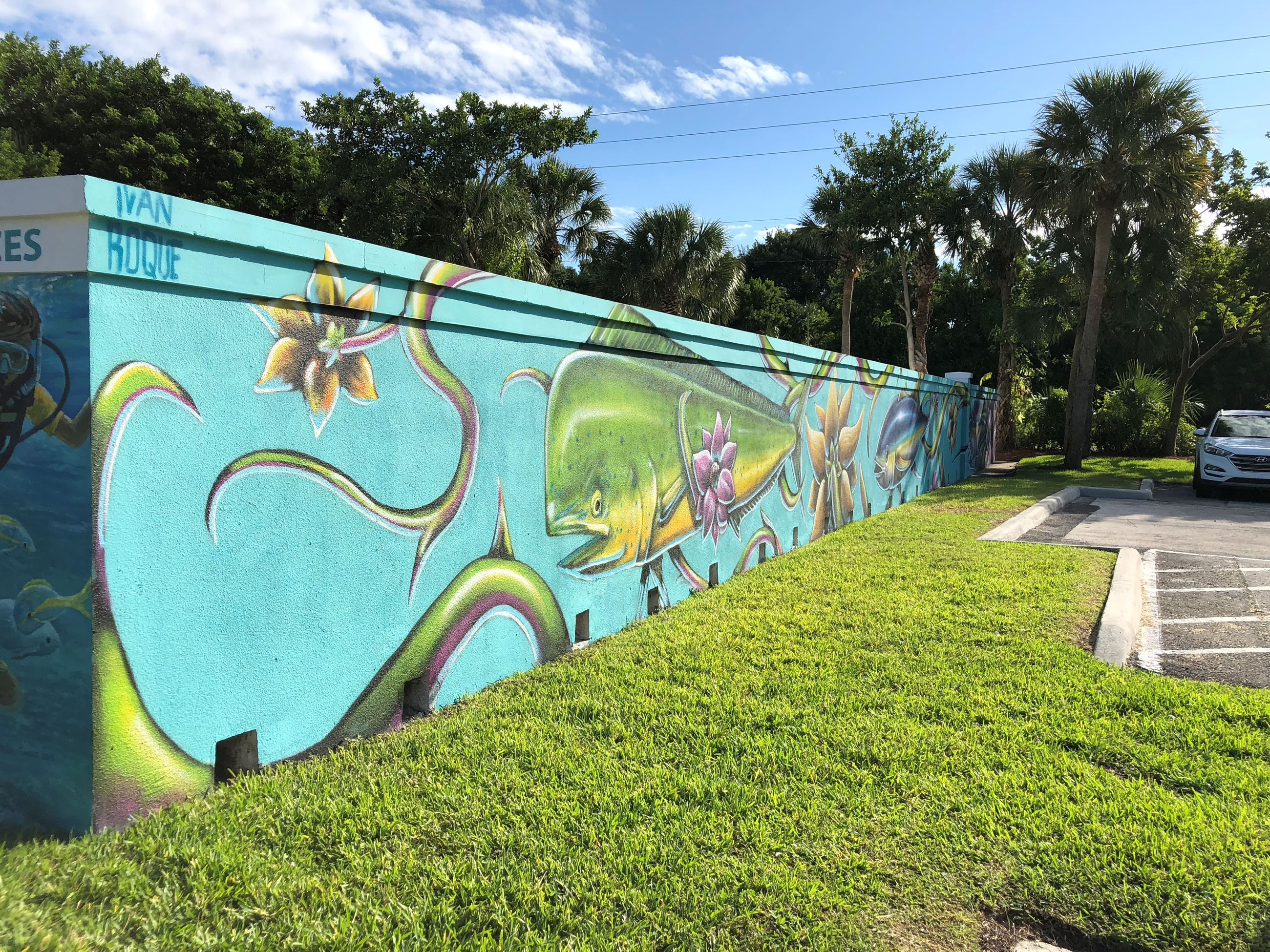 Red Reef Park West Wall Mural | Boca Raton, FL