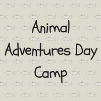 animal adventures day camp at gumbo limbo