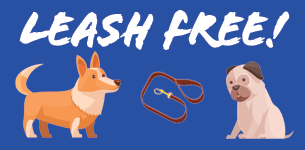 Leash free! Cartoons of dogs.